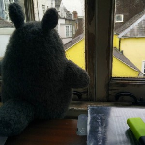 October_31__2015_at_1147AM_Totoro_is_watching_you